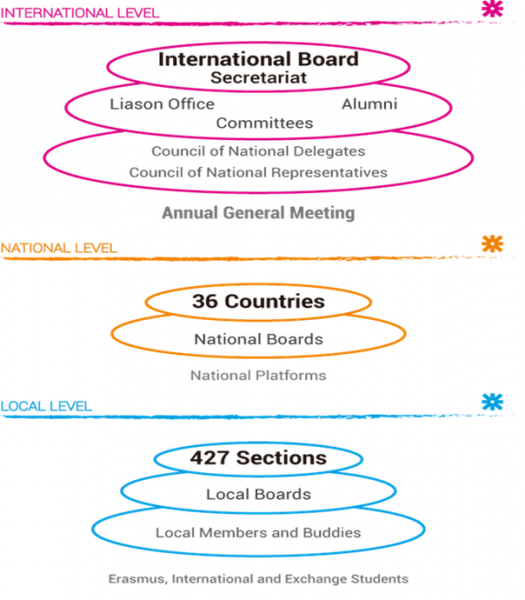 Figure showing the structure of ESN: the international, national and local level